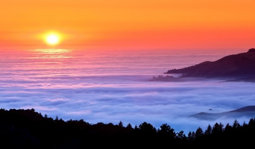 Sea+of+Fog.jpg